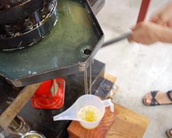 椿油搾り体験